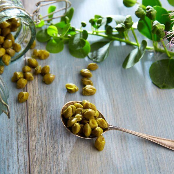 Olives & Vegetables